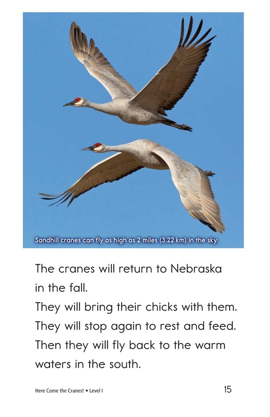 Book Preview For Here Come the Cranes! Page 15