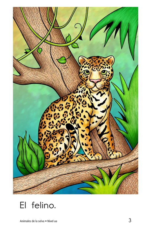 Book Preview For Rainforest Animals Page 3
