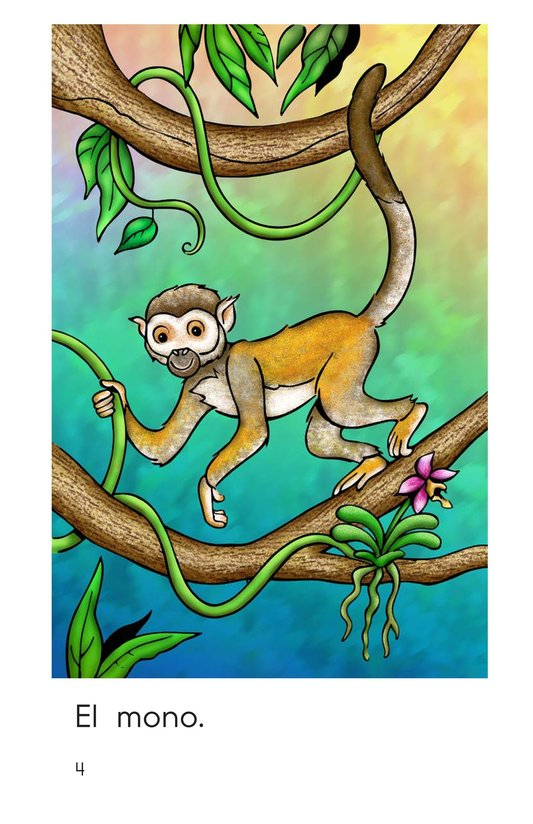 Book Preview For Rainforest Animals Page 4