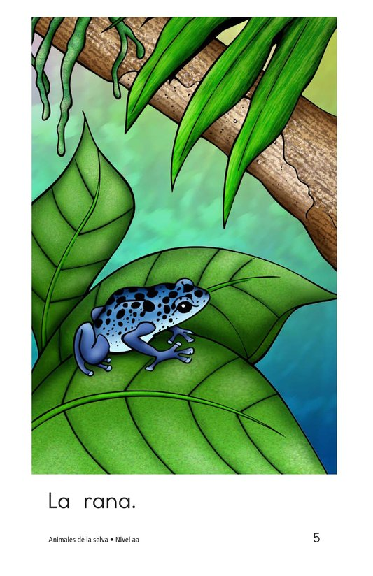 Book Preview For Rainforest Animals Page 5