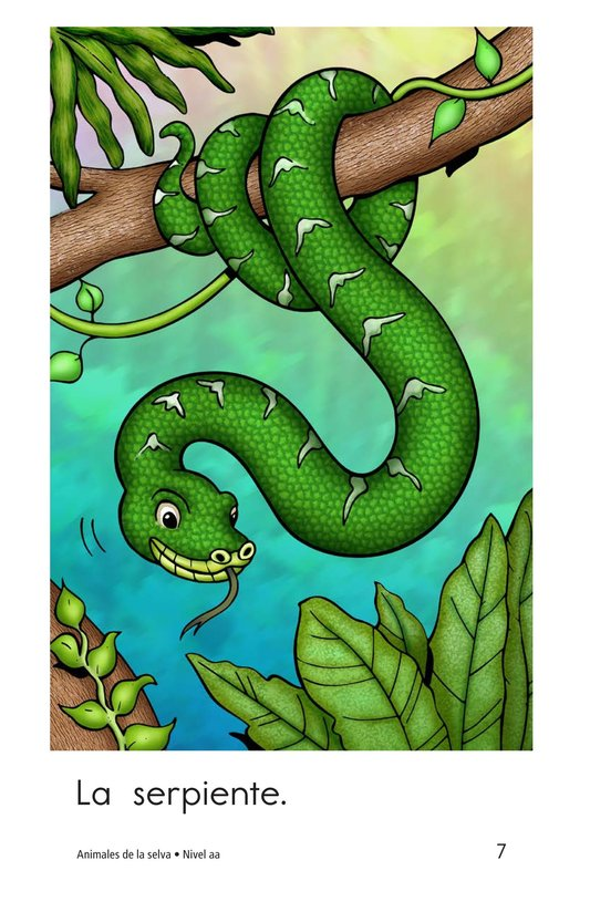 Book Preview For Rainforest Animals Page 7