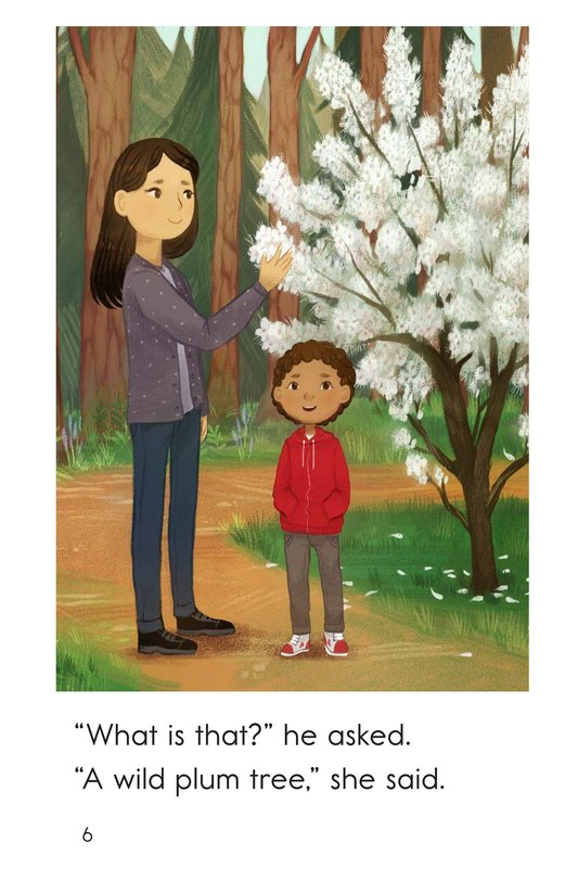 Book Preview For A Walk With Mom Page 6