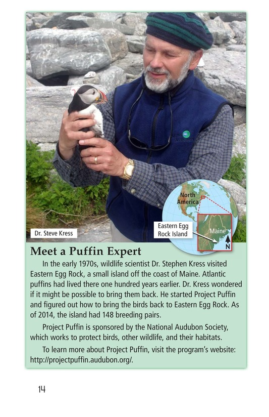 Book Preview For Puffins Page 14