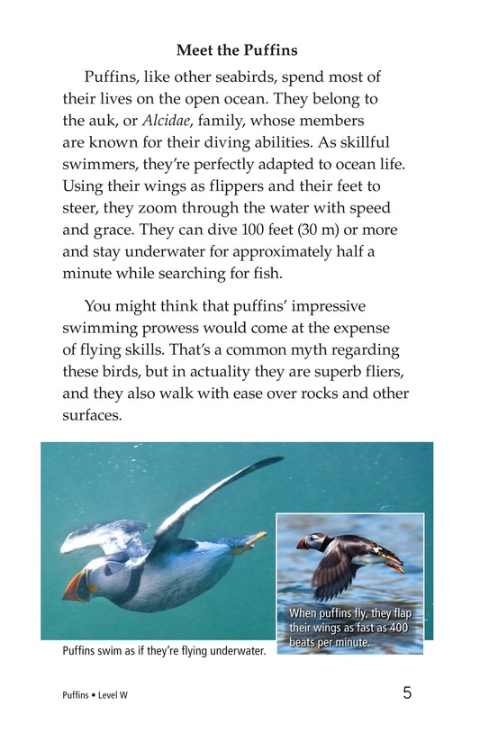 Book Preview For Puffins Page 5