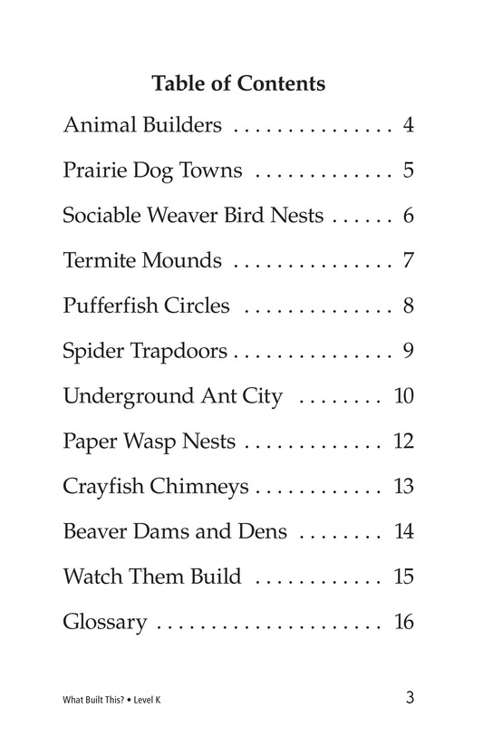 Book Preview For What Built This? Page 3