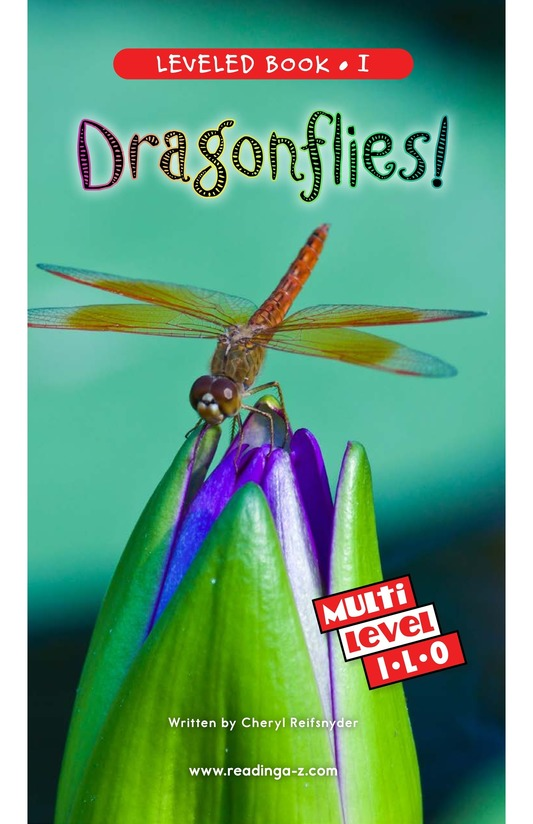 Book Preview For Dragonflies! Page 0