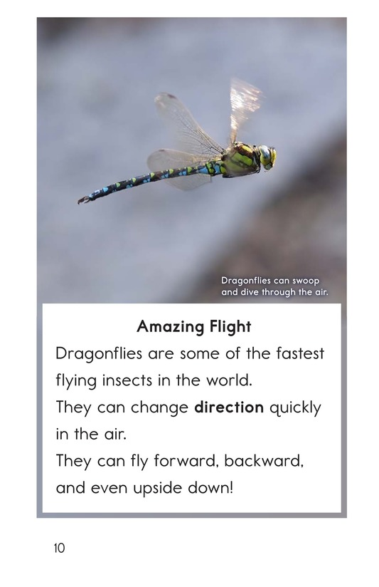 Book Preview For Dragonflies! Page 10