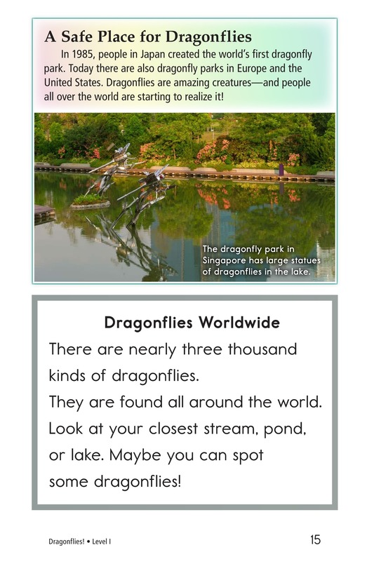 Book Preview For Dragonflies! Page 15