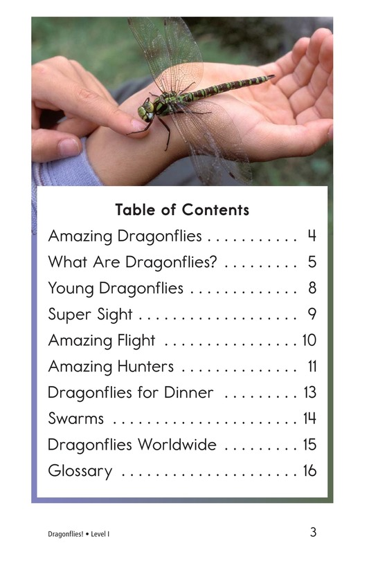 Book Preview For Dragonflies! Page 3