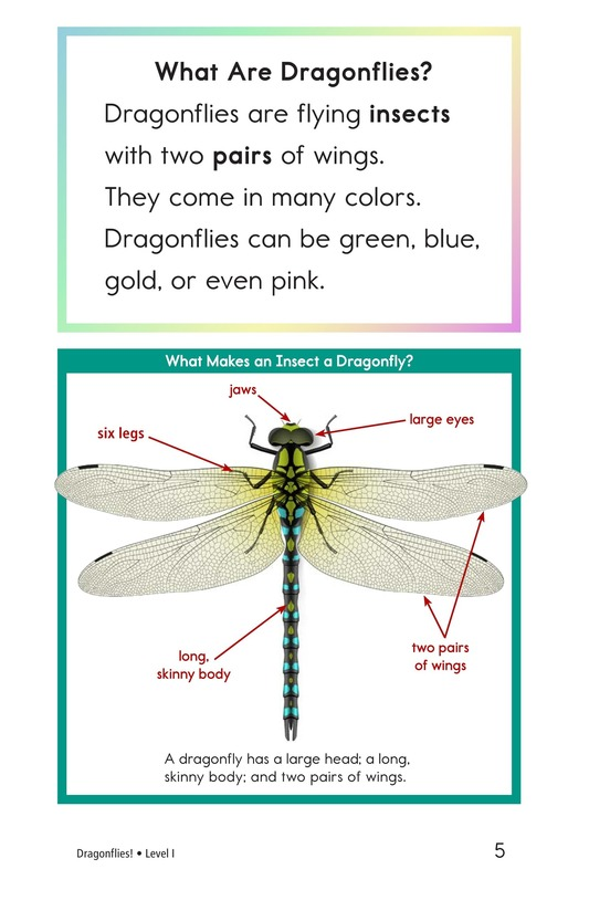 Book Preview For Dragonflies! Page 5