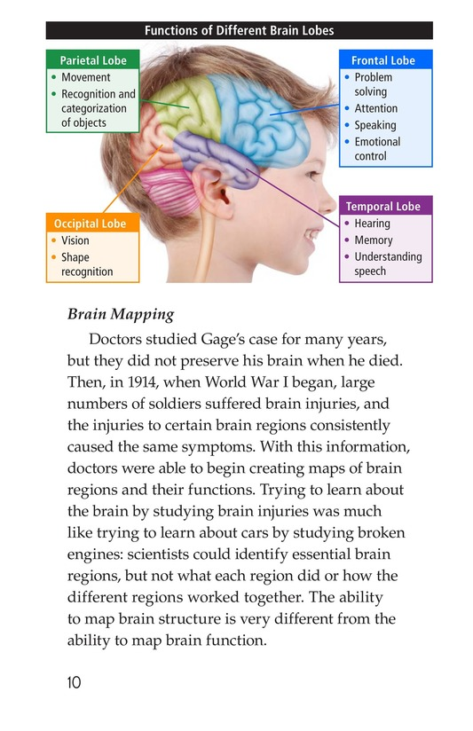 Book Preview For The Amazing Brain Page 10