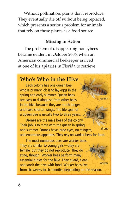 Book Preview For The Case of the Disappearing Honeybees Page 6
