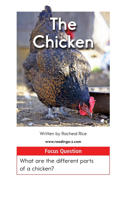Book Preview For The Chicken Page 1