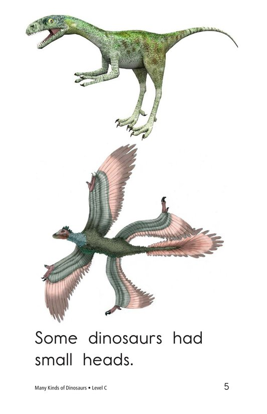 Book Preview For Many Kinds of Dinosaurs Page 5