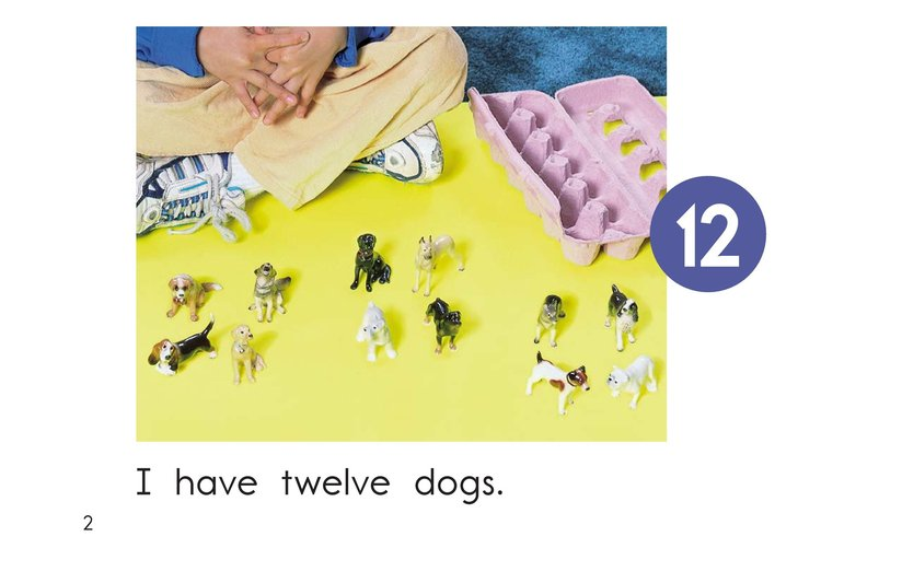 Book Preview For The Number Twelve Page 2