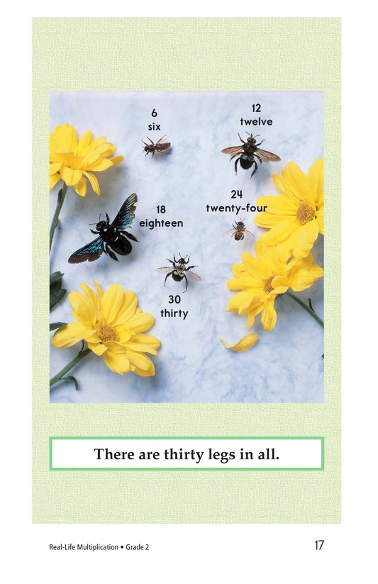 Book Preview For Real-Life Multiplication Page 17