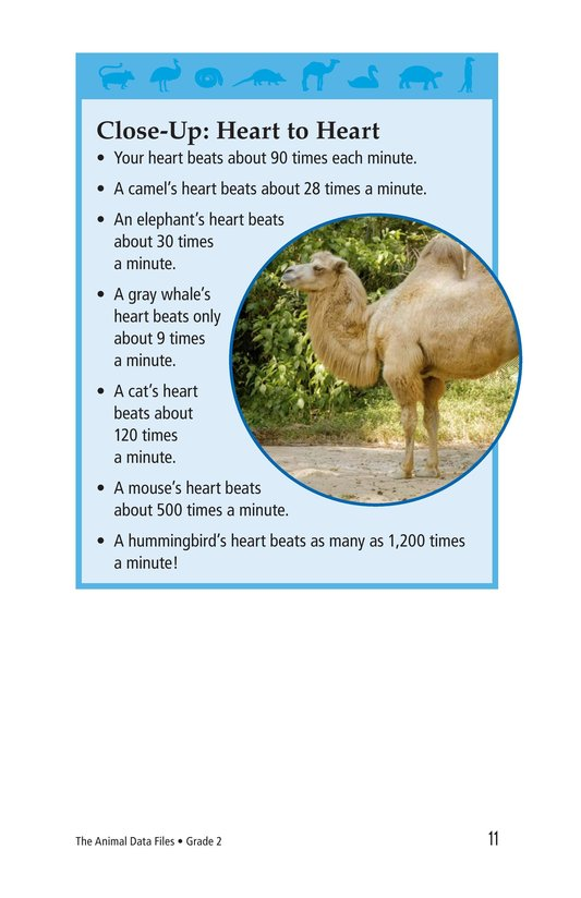 Book Preview For The Animal Data Files Page 11
