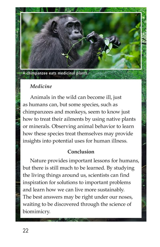Book Preview For Biomimicry Page 22