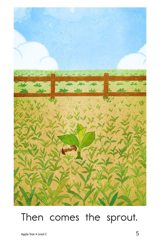 Book Preview For Apple Tree Page 5