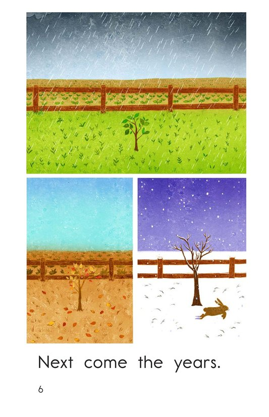 Book Preview For Apple Tree Page 6
