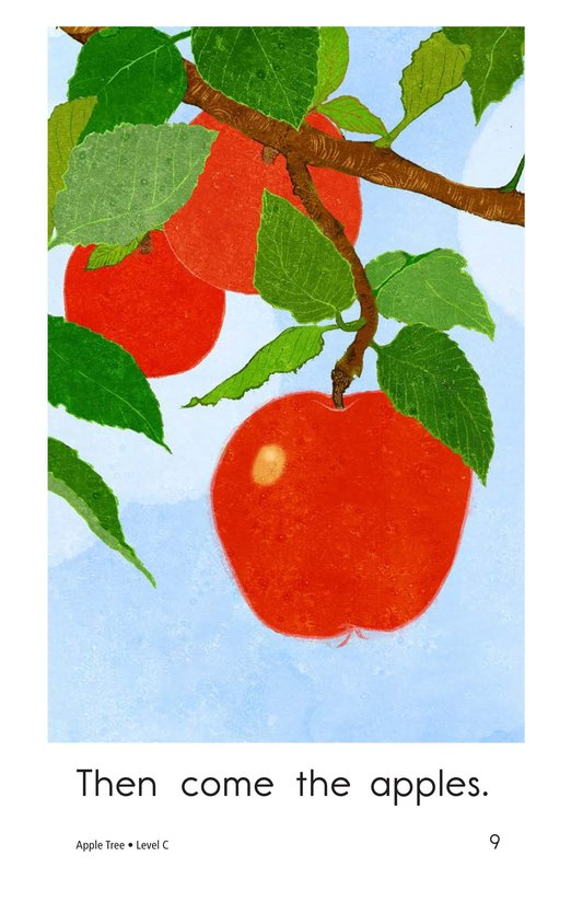 Book Preview For Apple Tree Page 9