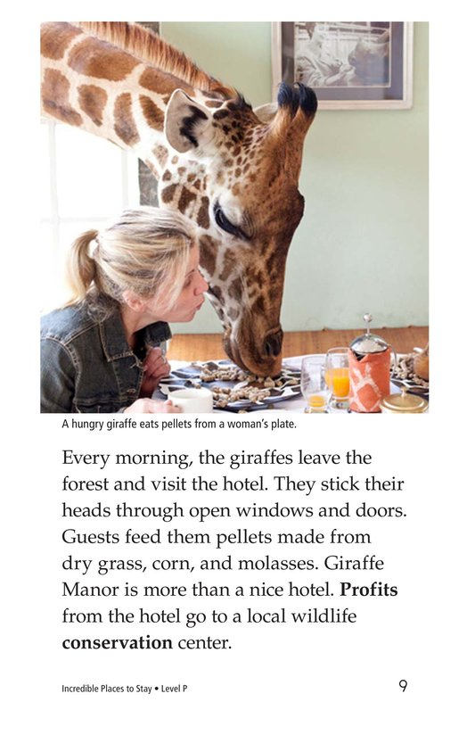 Book Preview For Incredible Places to Stay Page 9