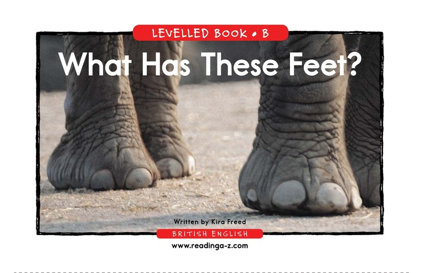 Book Preview For What Has These Feet? Page 1