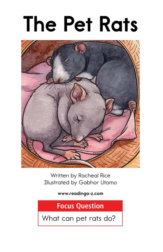 Book Preview For The Pet Rats Page 1