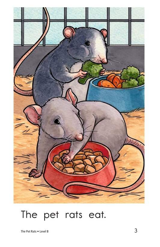 Book Preview For The Pet Rats Page 3
