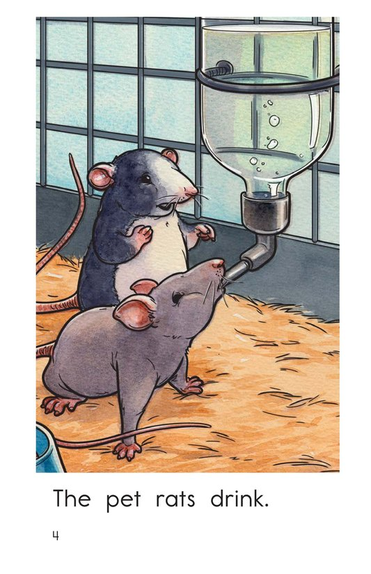 Book Preview For The Pet Rats Page 4