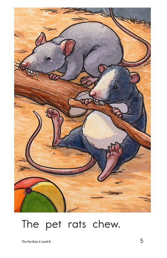 Book Preview For The Pet Rats Page 5