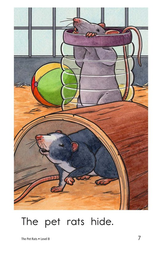 Book Preview For The Pet Rats Page 7