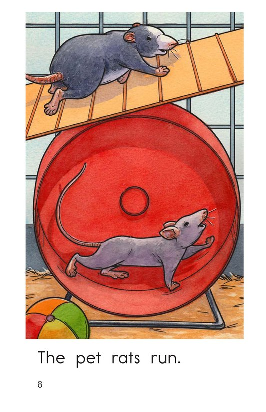 Book Preview For The Pet Rats Page 8