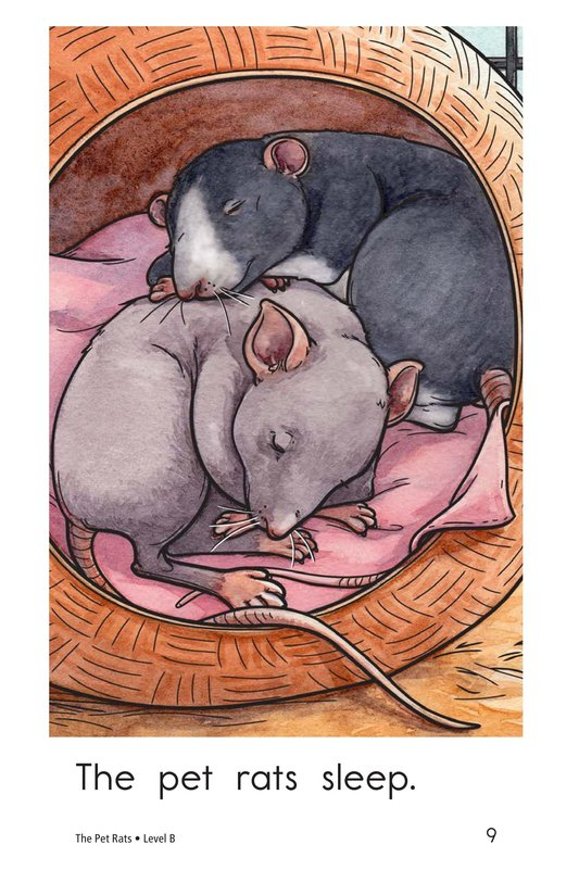 Book Preview For The Pet Rats Page 9