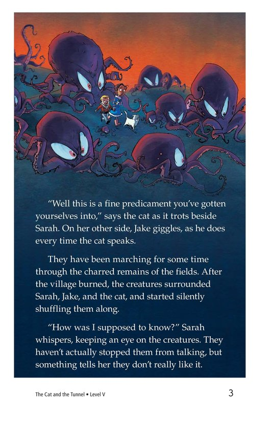 Book Preview For The Cat and the Tunnel Page 3
