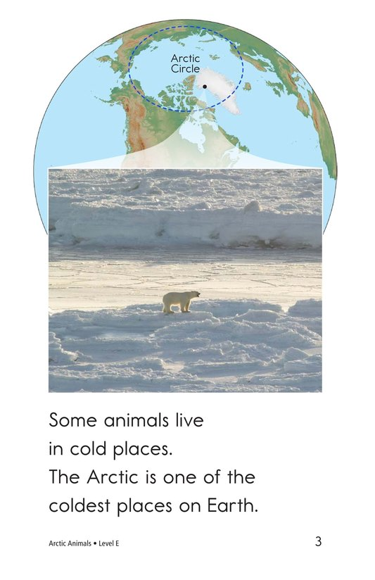 Book Preview For Arctic Animals Page 3