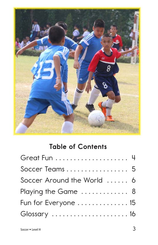 Book Preview For Soccer Page 3