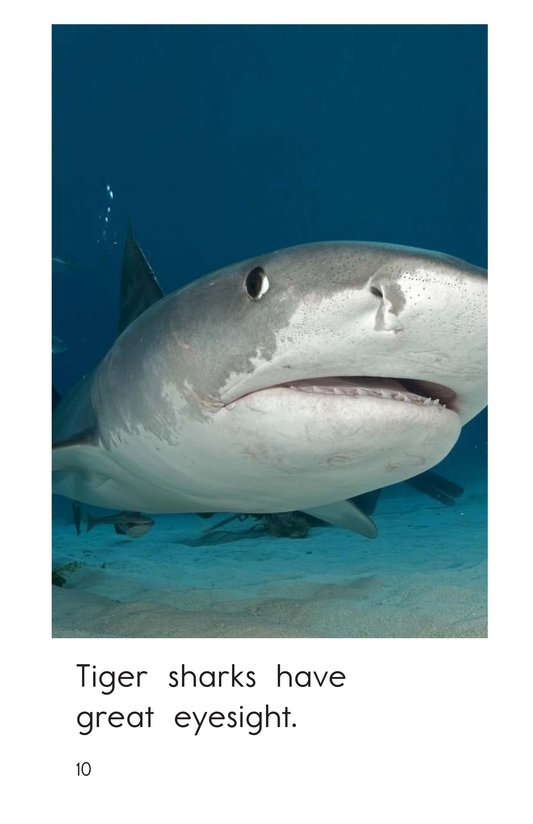 Book Preview For Tiger Sharks Page 10
