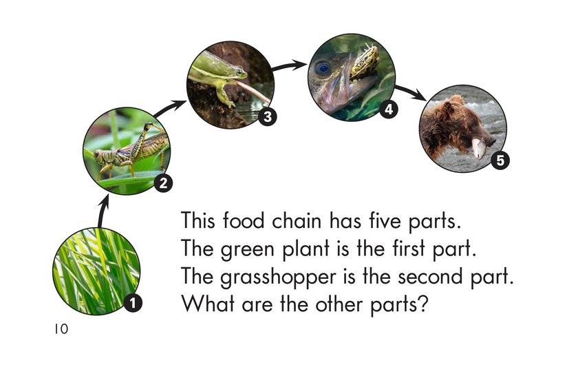 Book Preview For The Food Chain Page 10