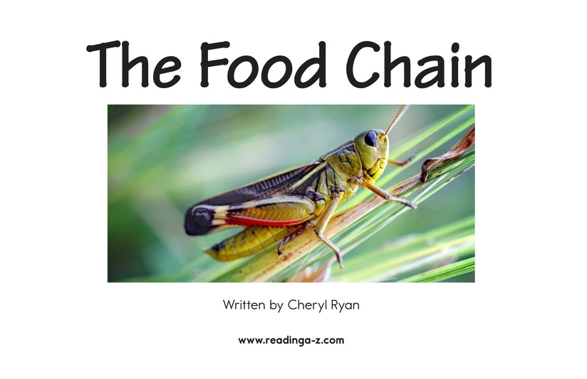 Book Preview For The Food Chain Page 2