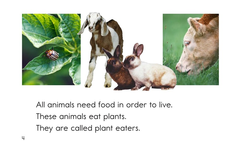Book Preview For The Food Chain Page 4