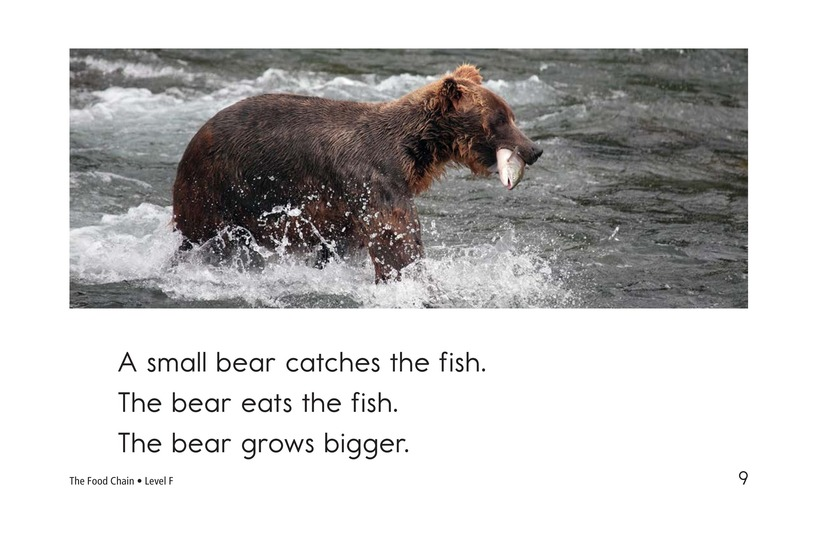 Book Preview For The Food Chain Page 9
