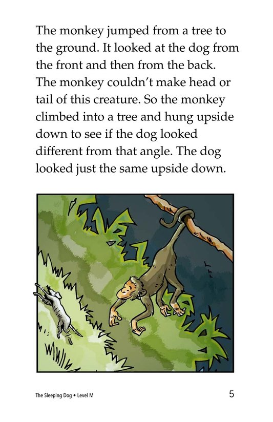 Book Preview For The Sleeping Dog Page 5