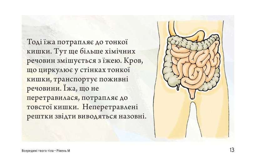 Book Preview For Inside Your Body Page 13