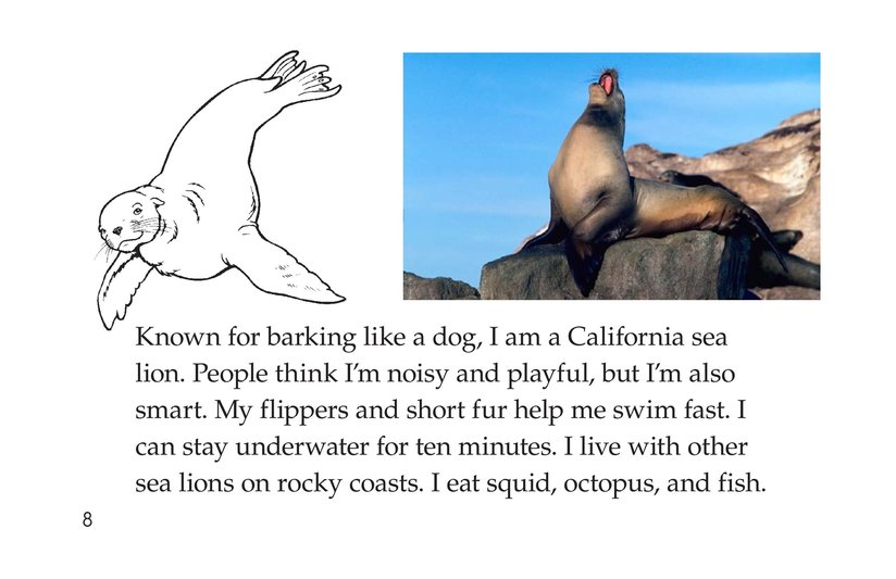Book Preview For Ocean Animals Page 8