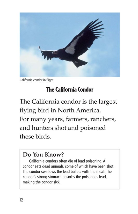 Book Preview For Endangered Birds Page 12