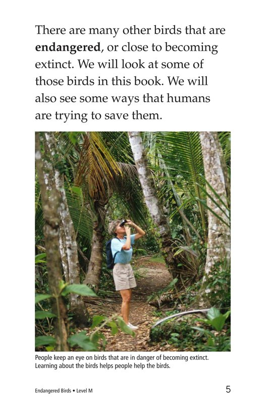 Book Preview For Endangered Birds Page 5