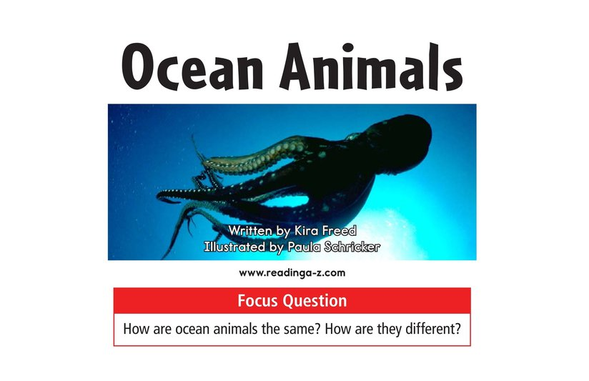 Book Preview For Ocean Animals Page 1
