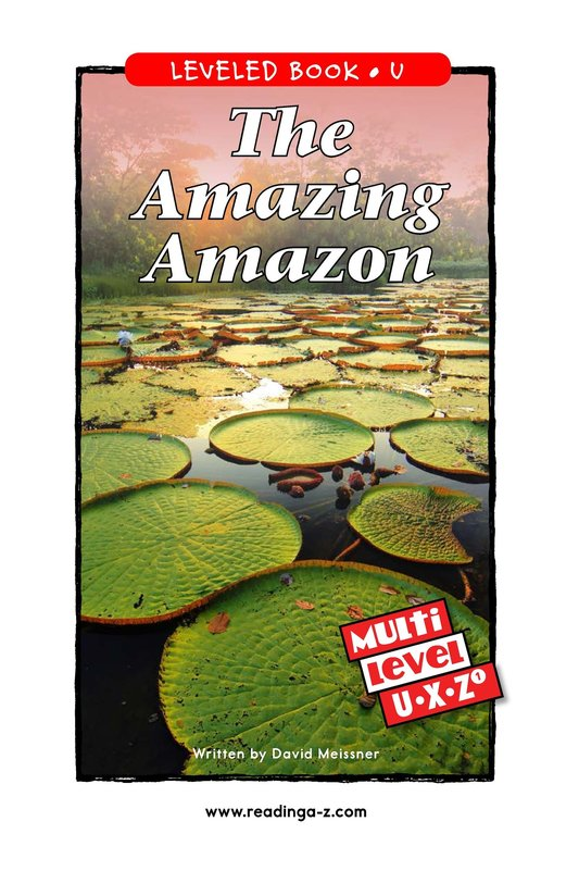 Book Preview For The Amazing Amazon Page 0