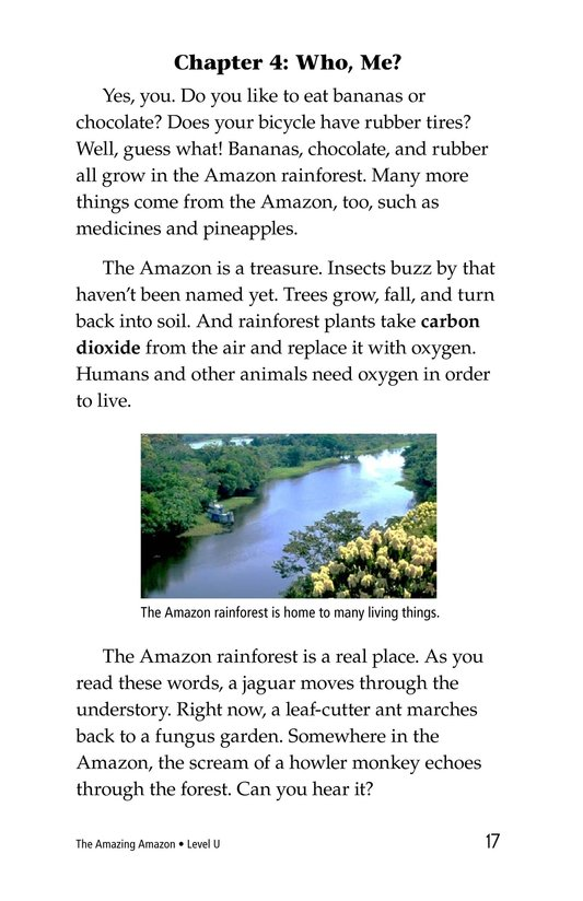 Book Preview For The Amazing Amazon Page 17